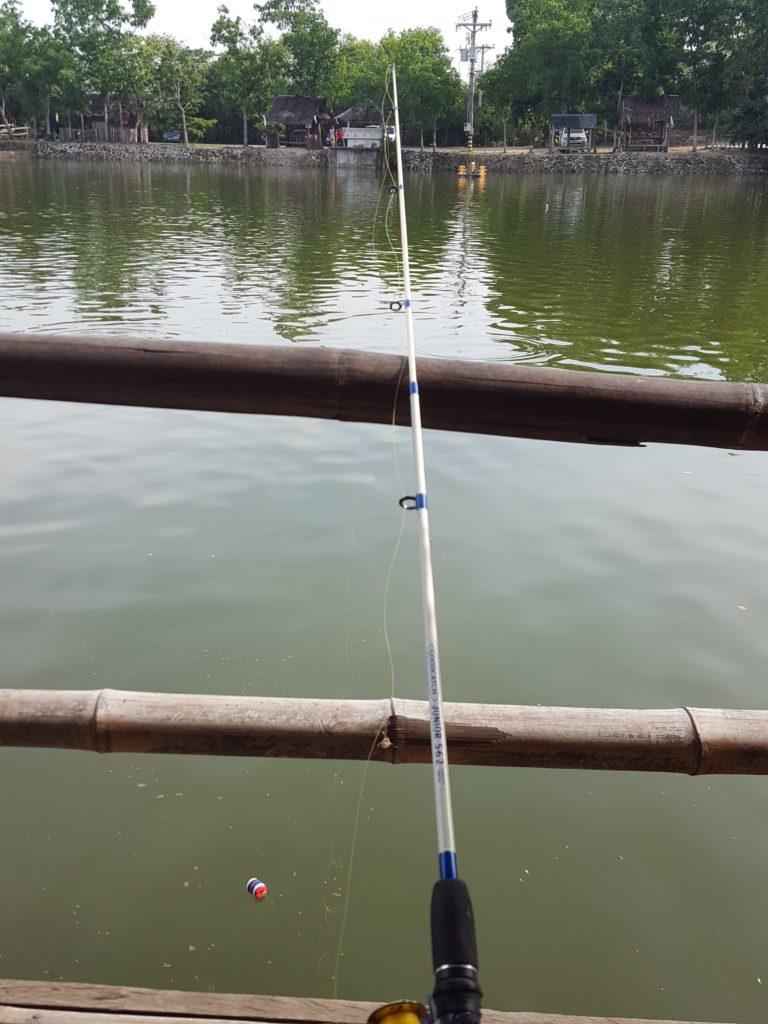 パパキッズで魚釣り