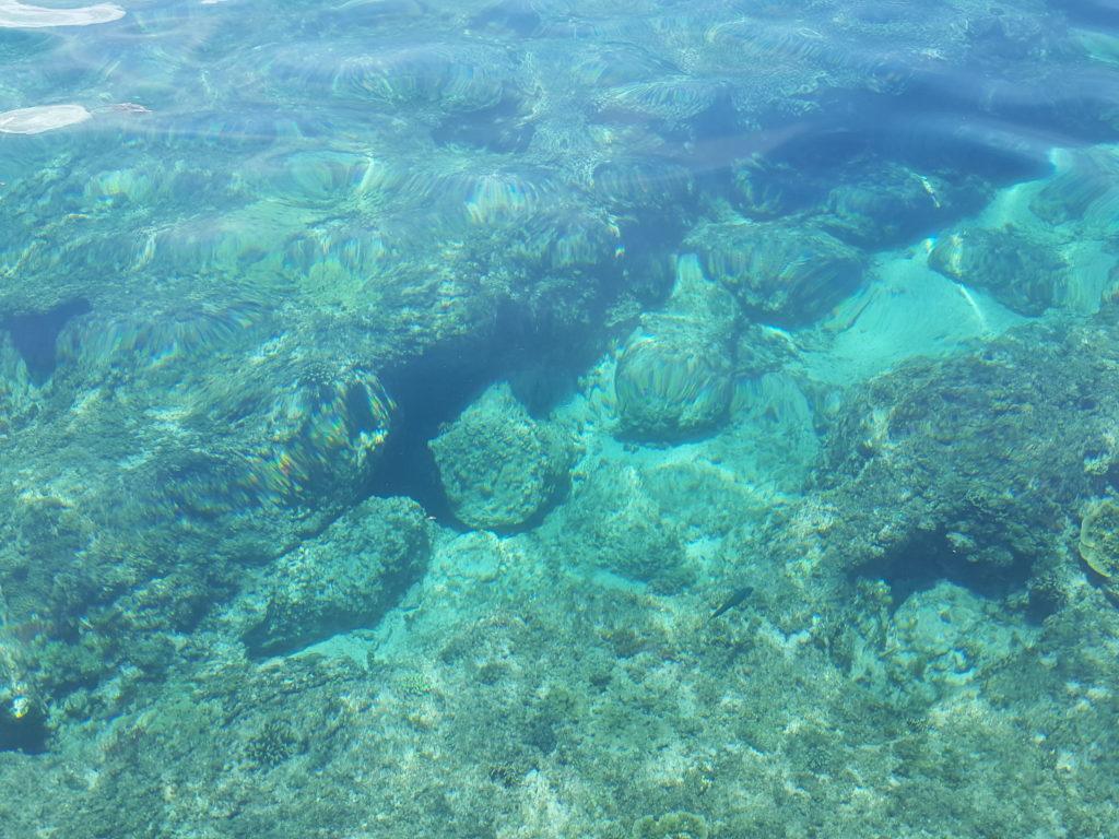マラパスクア島周遊ツアー06