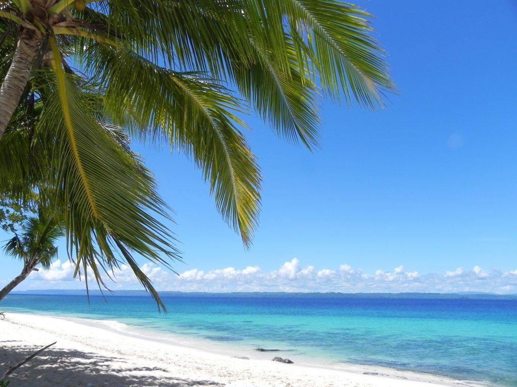 セブの美しいビーチ