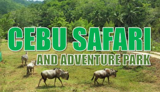 セブ島おすすめ観光地『セブサファリ&アドベンチャーパーク(Cebu Safari and Adventure Park)』※動画有