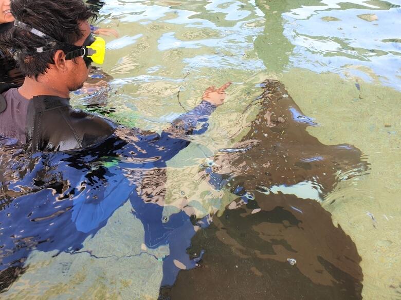 セブ・オーシャンパーク(Cebu Ocean Park)各種体験ゾーン