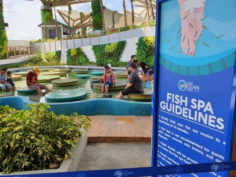 セブ・オーシャンパーク(Cebu Ocean Park)フィッシュスパ