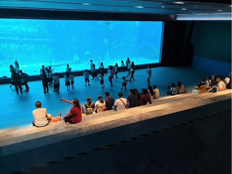 セブ・オーシャンパーク(Cebu Ocean Park)Deep Tank Lagoon